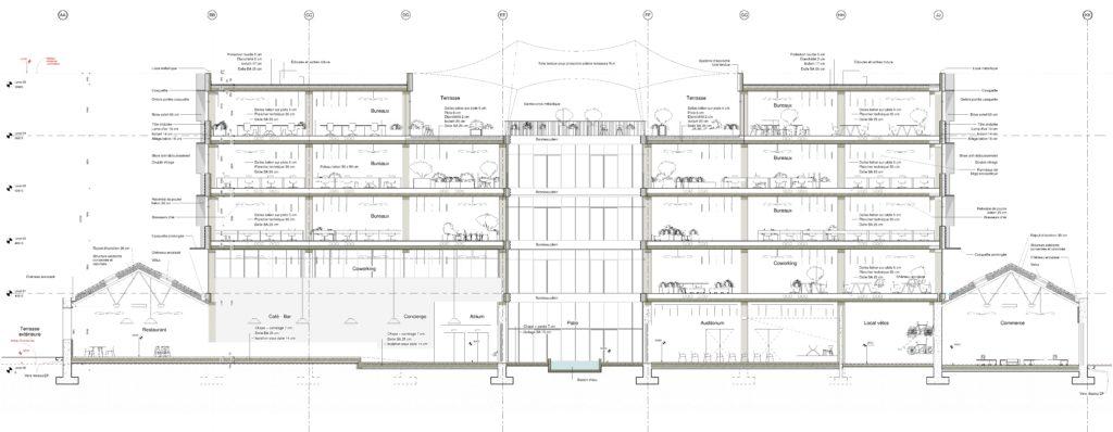 Coupe du projet montrant l'articulation des espaces.
