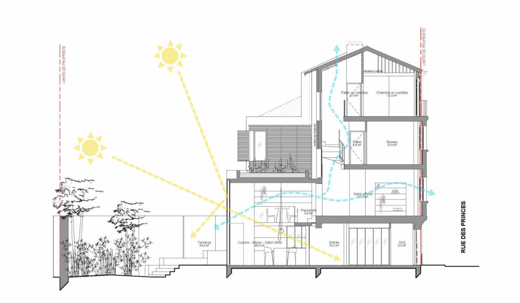 Coupe montrant la double hauteur côté jardin, le claustra, la relation entre les espaces de vie ainsi que le respect de principes bioclimatiques.
